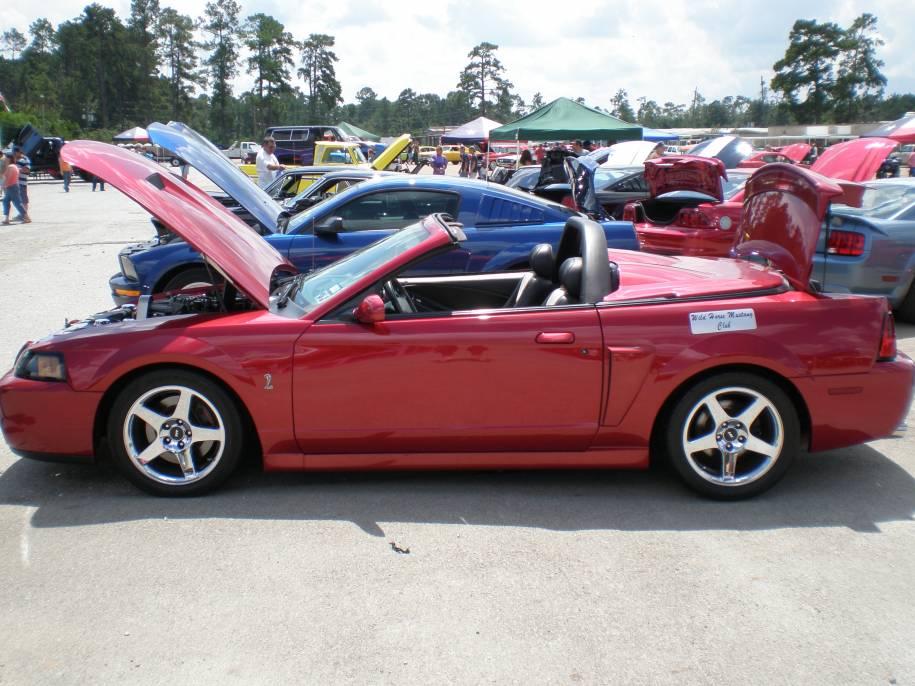 03 Mustang Cobra   Vert