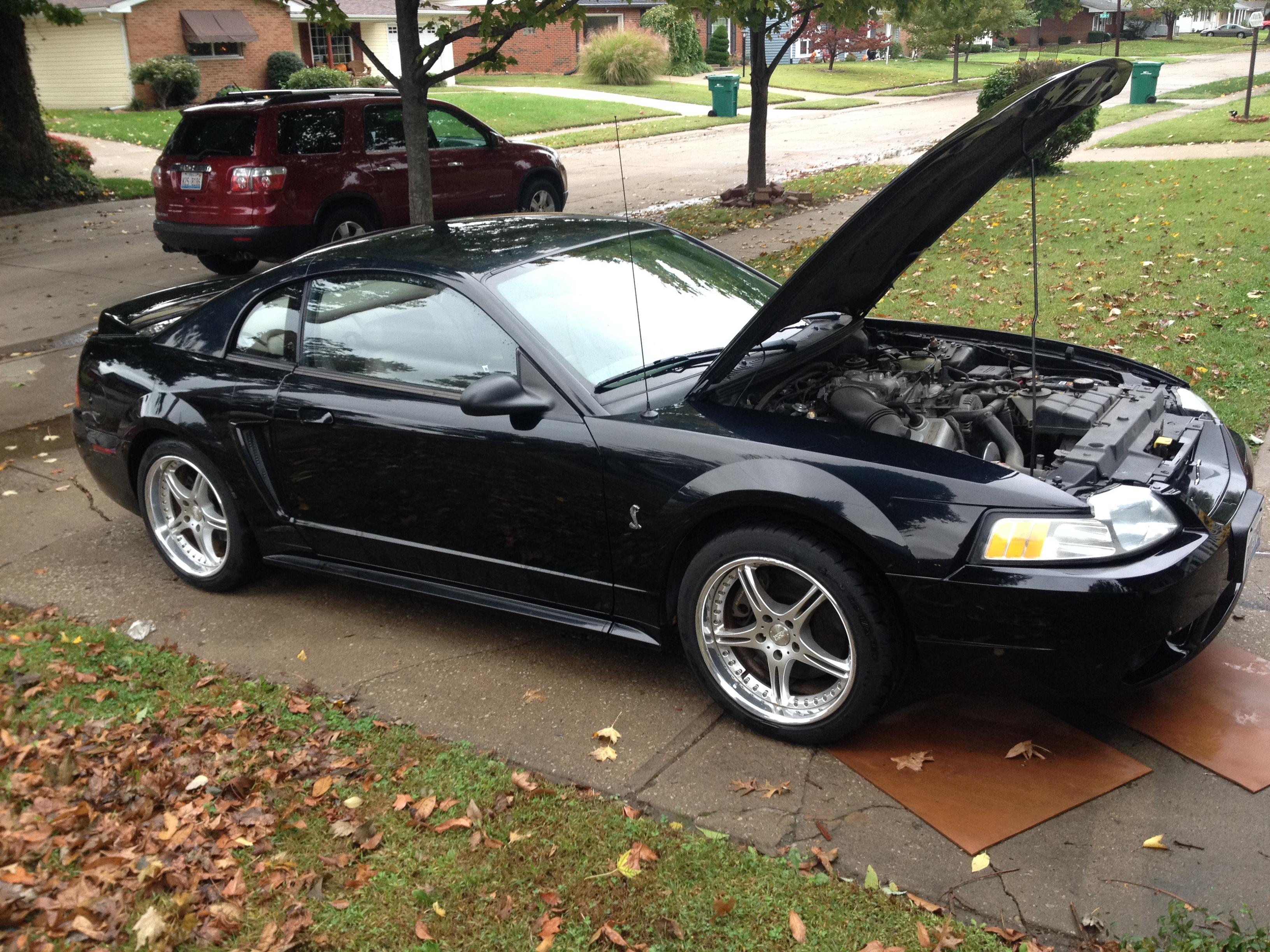 1999 Ford Cobra Mustang